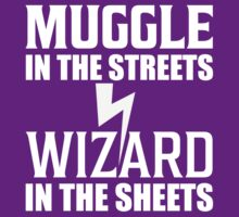 Muggle In The Streets Wizard In The Sheets T Shirt by bitsnbobs