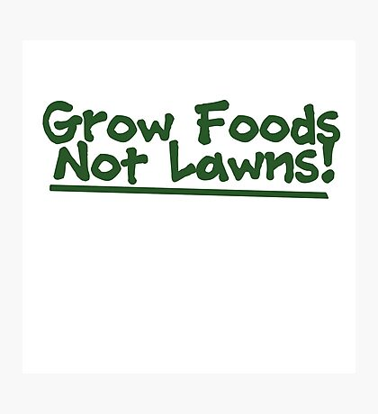 Grow food now lawns Photographic Print