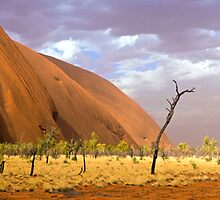 Uluru Dust Storm, 13 November 2008 by Steven Pearce