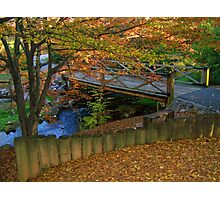 Colors of Tennessee Photographic Print