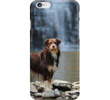 Australian Shepherd at the Waterfall iPhone Case/Skin