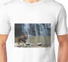 Australian Shepherd at the Waterfall Unisex T-Shirt