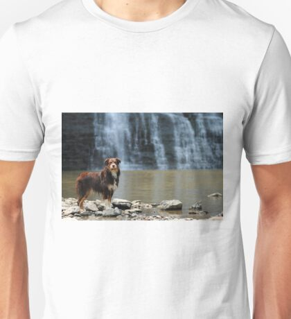 Australian Shepherd at the Waterfall Unisex T-Shirt