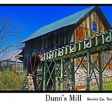 Dunn's Mill Tennessee by lynell