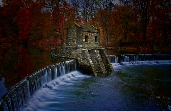 Mill by Mary Ann Reilly