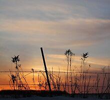 February Sunset by AbigailJoy