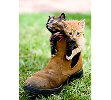 Puss in Boots Photographic Print