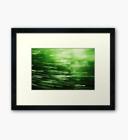 Abstract Macro #98 Framed Print