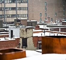City Snowfall II by Judith Oppenheimer