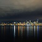 Flight Path Over The Seattle Skyline by Jennifer Hulbert-Hortman