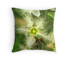 Brush box Flower Throw Pillow