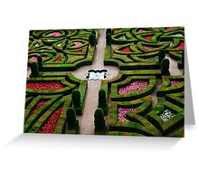 Formal Garden - Chateau Villandry, Loire Valley 3 Greeting Card