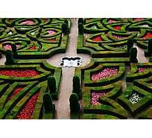 Formal Garden - Chateau Villandry, Loire Valley 3 Photographic Print