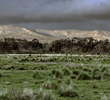 Snowy Mountains - NSW, Australia by Wendy  Meder