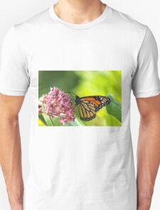 Monarch Butterfly on Milkweed T-Shirt