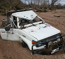 Toyota Landcruiser washed down creekline in Central Australia. by wildlife