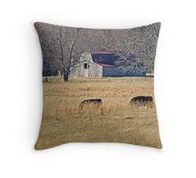 Barn and Angus Throw Pillow
