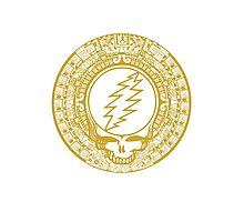 Mayan Calendar Steal Your Face - GOLD Photographic Print