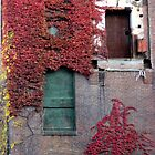 Doors and Vines by Stormoak Lonewind