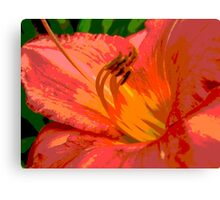 Day Lily Glow Canvas Print