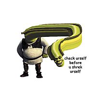 Check yourself before you Shrek yourself Photographic Print