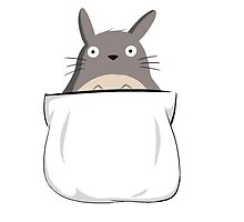 Totoro in Your Pocket by Mellenz