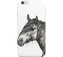 Wild Horse On the Plains iPhone Case/Skin