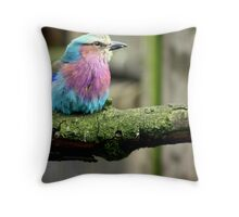 colourful Throw Pillow
