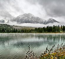 Patricia Lake - Jasper National Park by Vickie Emms