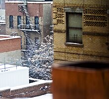 City Snowfall by Judith Oppenheimer