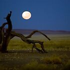 Moon set in the desert. Sand Sea 8 by David Tovey