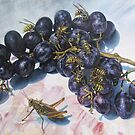 Grapes and Yellow Jackets by Joe Helms