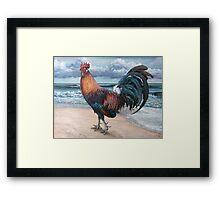 Pensive Gait (Rooster 4) Framed Print