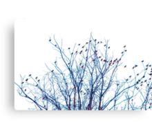 A Partridge in a Pear Tree - Blue Canvas Print