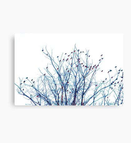 A Partridge in a Pear Tree - Blue Canvas Print