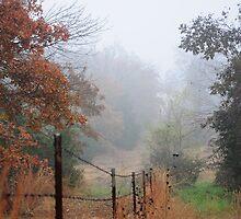 Misty Morning by CjbPhotography