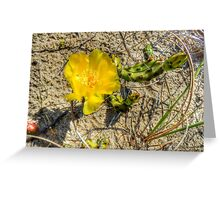 Prickly Pear Cactus Greeting Card