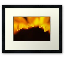 Sunflower Petals #2 Framed Print