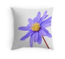 True Blue ...... Throw Pillow