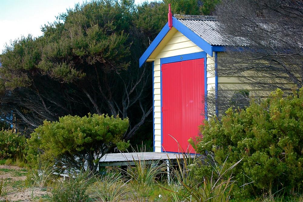 Red Door by Roslyn Slater