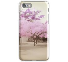 Soft Entry iPhone Case/Skin