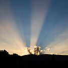 Sunrise over the Dandenong ranges by Larry Varley