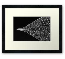 Leaf Skeleton #1 Framed Print