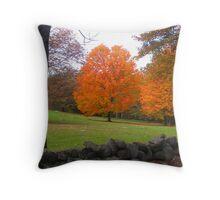 Orange Bliss Throw Pillow