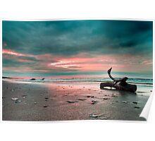 Driftwood on the Beach sunrise Poster