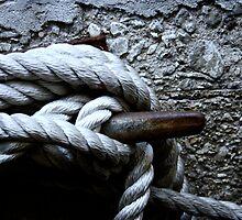 Tied Up by Andrea Barnett