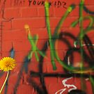 Dandelion Series Orange Graffitii by Eric Abernethy