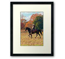 Field Trial Rider Framed Print