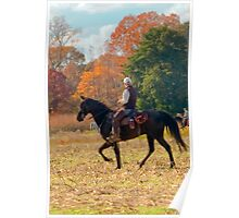 Field Trial Rider Poster
