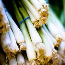 Green Onions by photogurrl